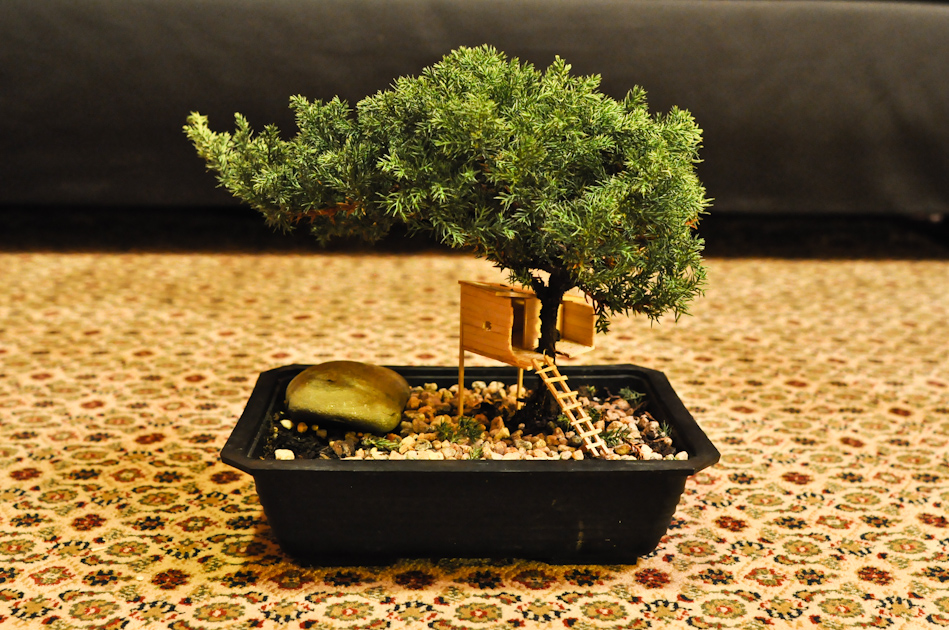 Treehouse out of miniature lumber on a bonsai tree